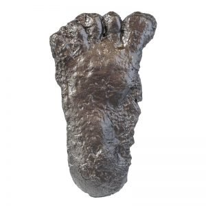 Paul Freeman Bigfoot Print Cast