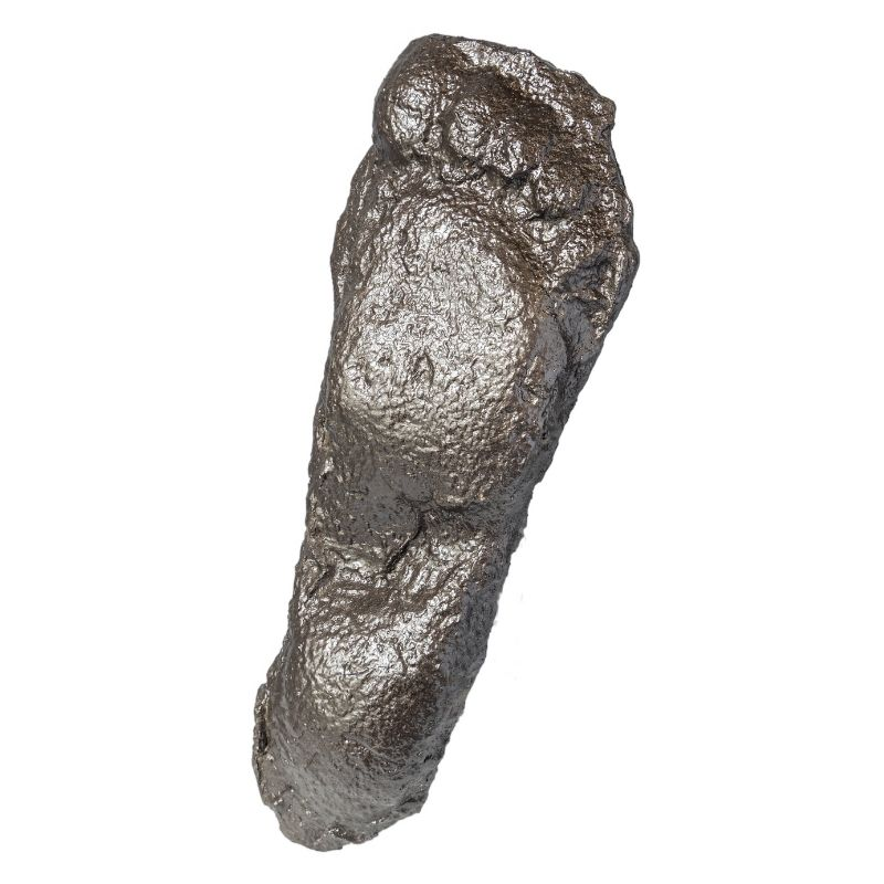 Patterson-Gimlin Bigfoot Cast 1